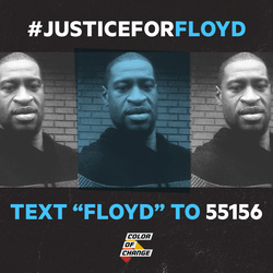 justice for floyd color of change.png